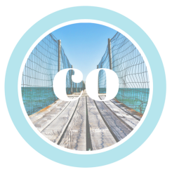 CO logo 3